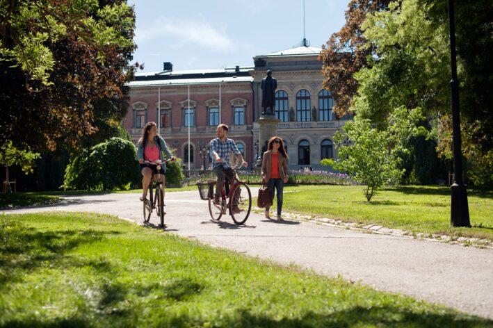 Foto: Cecilia Larsson Lantz/Imagebank.sweden.se
