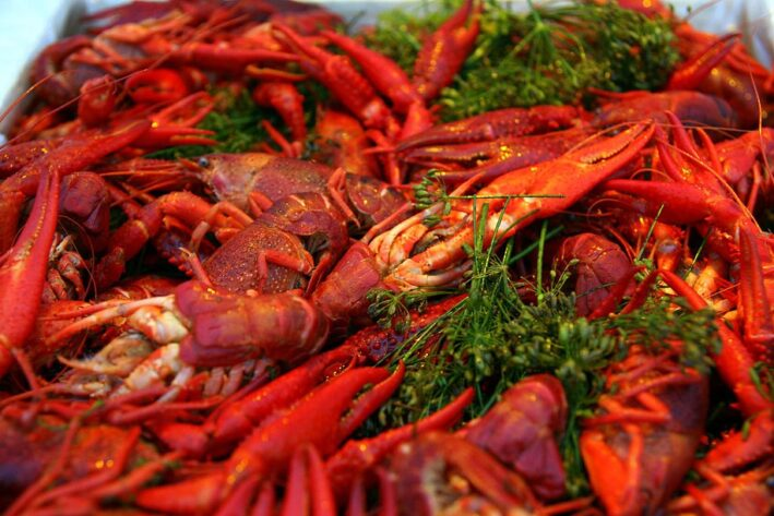 1024px-Cooked_crayfish_with_dill