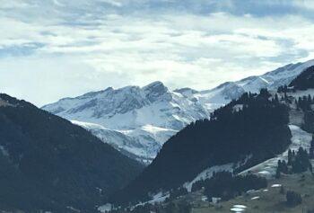 God fortsättning alla SVIV:s medlemmar i Schweiz